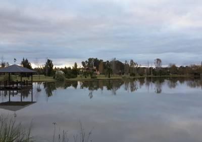Vista al Muelle Central