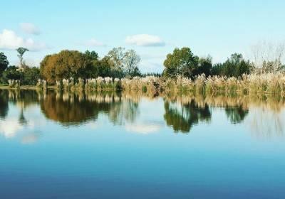 Lago Central